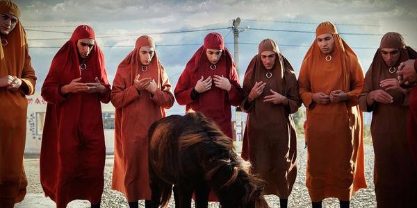 Oh, heiliges Pferdchen sprich zu mir: in der Volksrepublik Bubunne vertrauen die Menschen auf die Weisheit der Pferde. © Pandastorm Pictures GmbH